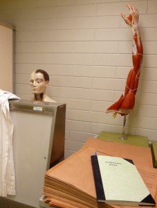 Anatomy Museum, Flinders University